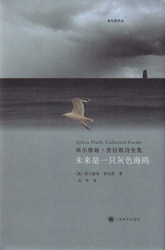 未来是一只灰色海鸥