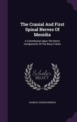 The Cranial and First Spinal Nerves of Menidia