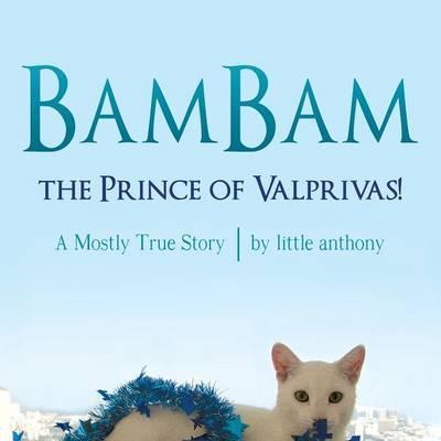 BamBam, the Prince of Valprivas!