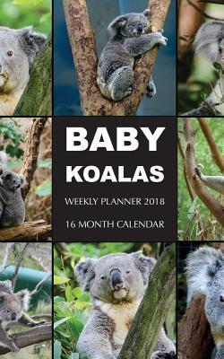 Baby Koalas Weekly Planner 2018