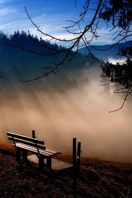 Early Morning Mist i...