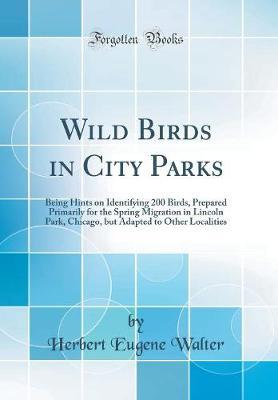 Wild Birds in City P...