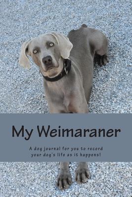 My Weimaraner