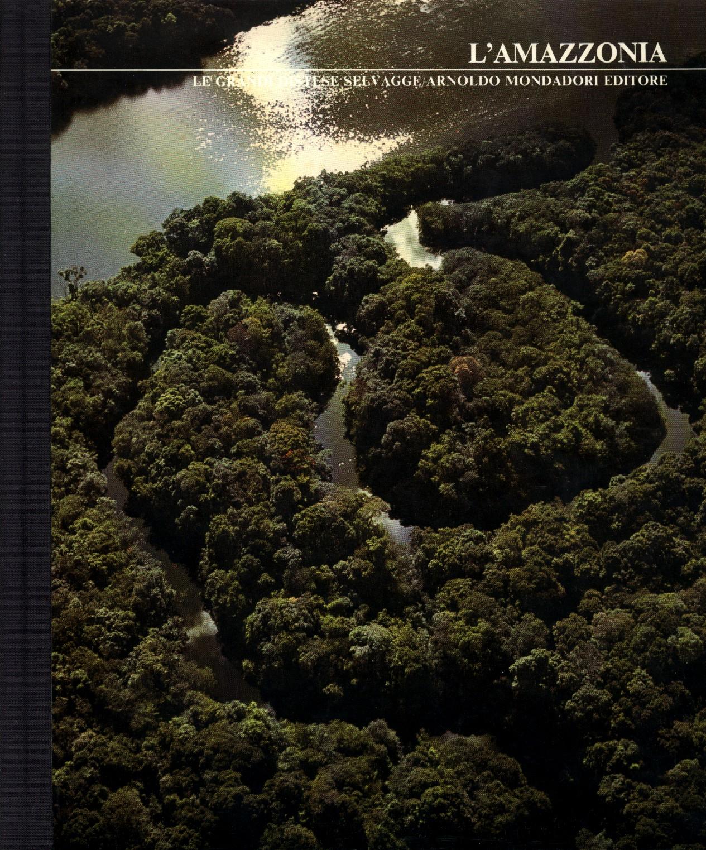 L'Amazzonia
