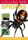 Collins Gem Spiders Photoguide