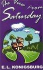 Thorndike Young Adult - Large Print - The View From Saturday