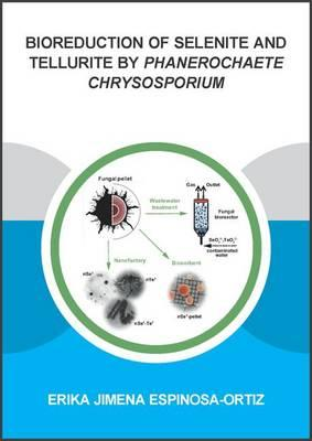 Bioreduction of Selenite and Tellurite by Phanerochaete Chrysosporium