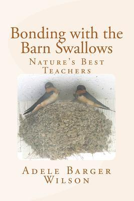 Bonding With the Barn Swallows