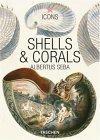 Seba, Shells & Coral...