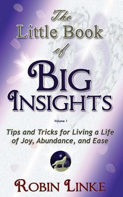 The Little Book of BIG Insights  Volume I