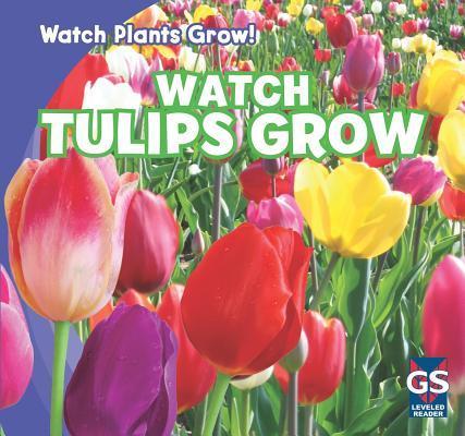 Watch Tulips Grow