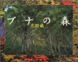 ブナの森(写真集)