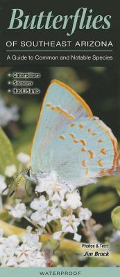 Butterflies of Southeast Arizona
