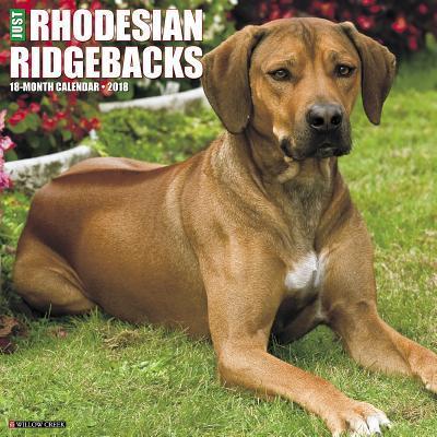 Just Rhodesian Ridgebacks 2018 Calendar