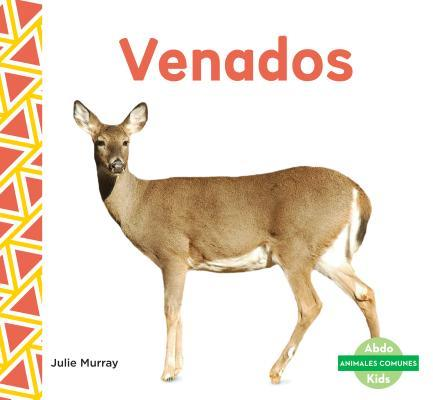 Venados / Deer