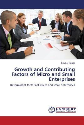 Growth and Contributing Factors of Micro and Small Enterprises