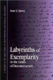 Labyrinths of Exemplarity