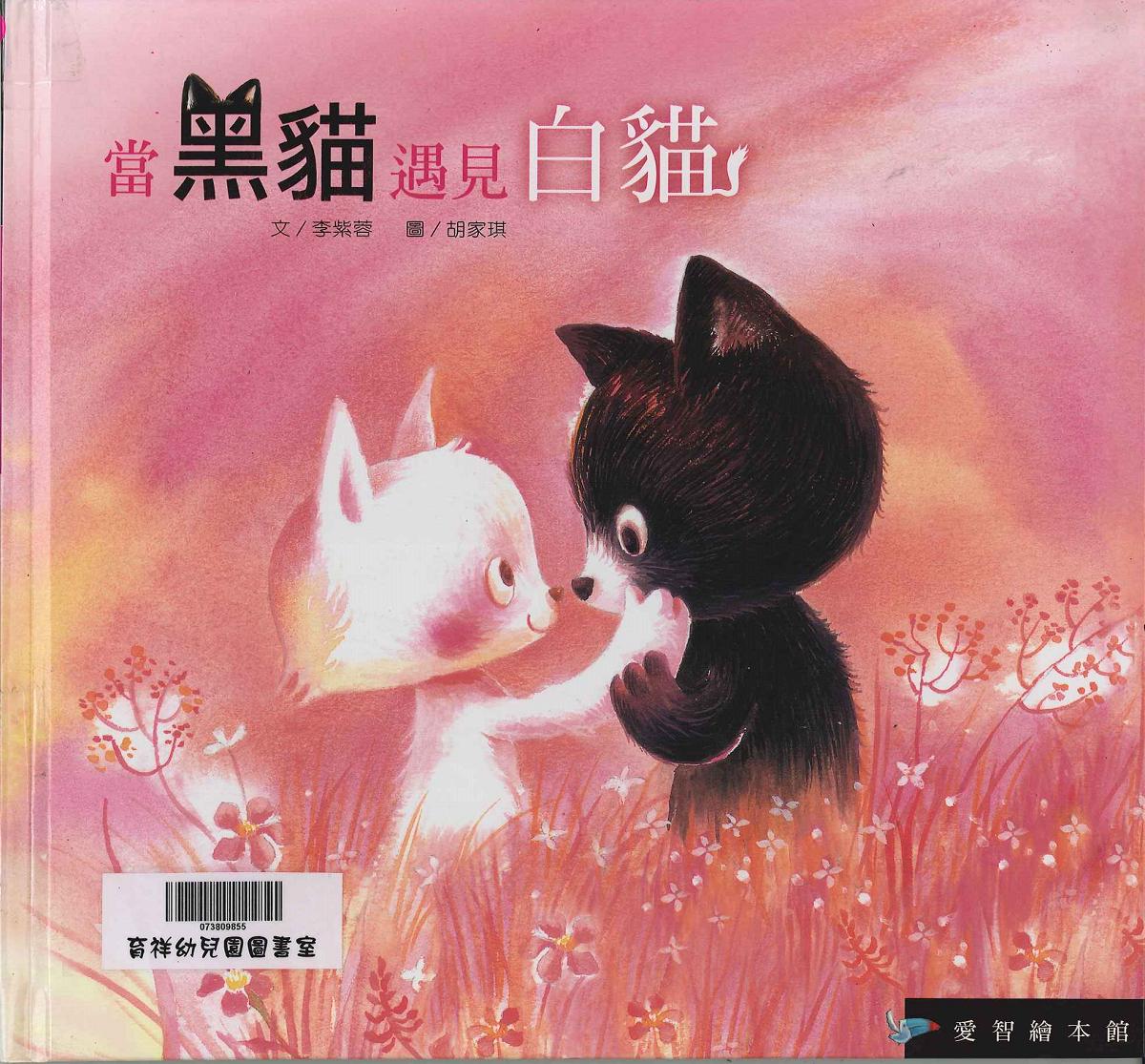 當黑貓遇見白貓