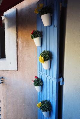 Flower Pots on a Blue Door Journal