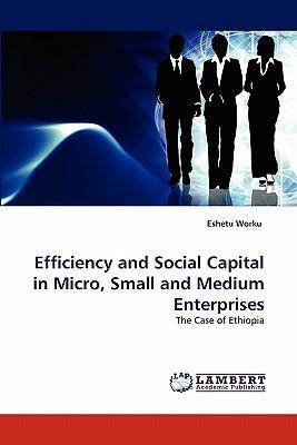 Efficiency and Social Capital in Micro, Small and Medium Enterprises