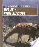 Life at a High Altitude