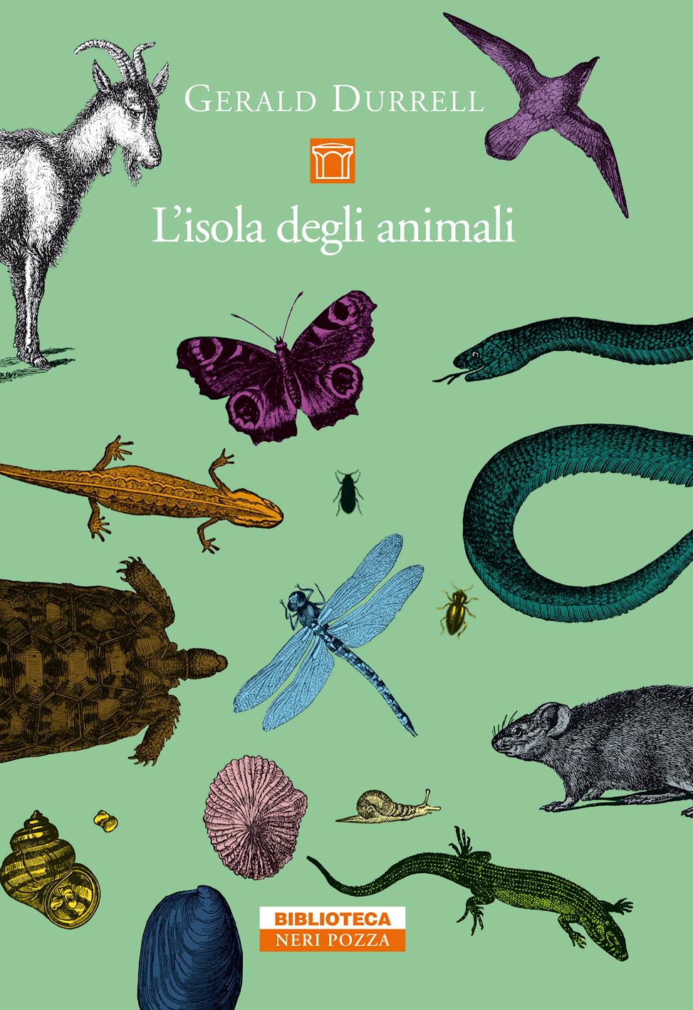 L'isola degli animal...