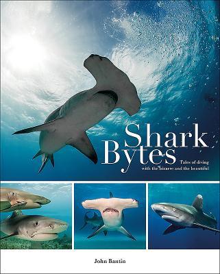 Shark Bytes