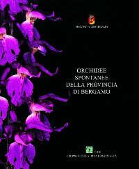 Orchidee spontanee della provincia di Bergamo