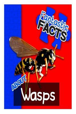 Fantastic Facts About Wasps