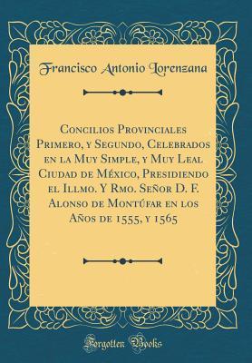 Concilios Provinciales Primero, y Segundo, Celebrados en la Muy Simple, y Muy Leal Ciudad de México, Presidiendo el Illmo. Y Rmo. Señor D. F. Alonso ... en los Años de 1555, y 1565 (Classic Reprint)