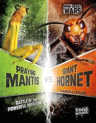 Praying Mantis vs Giant Hornet