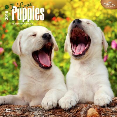 I Love Puppies 2016 Calendar