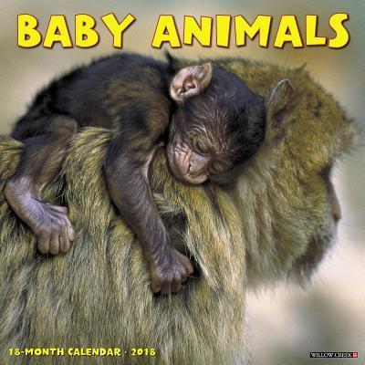 Baby Animals 2018 Calendar