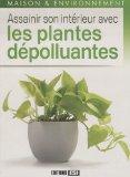 Assainir son intérieur avec les plantes dépolluantes