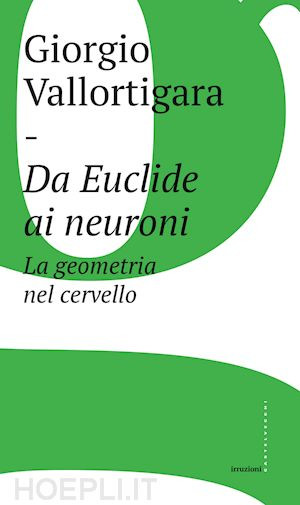 Da Euclide ai neuron...