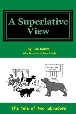 Superlative View