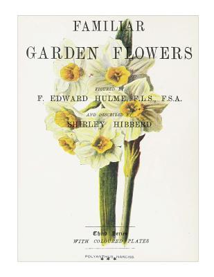 Familiar Garden Flowers - Polyanthus Narciss