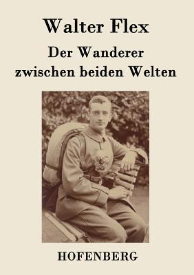 Der Wanderer zwische...