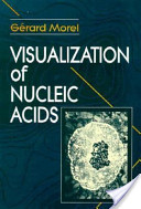 Visualization of Nucleic Acids