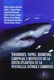 Tiburones, rayas, quimeras, lampreas y mixínidos de la costa atlántica de la península ibérica y canarias