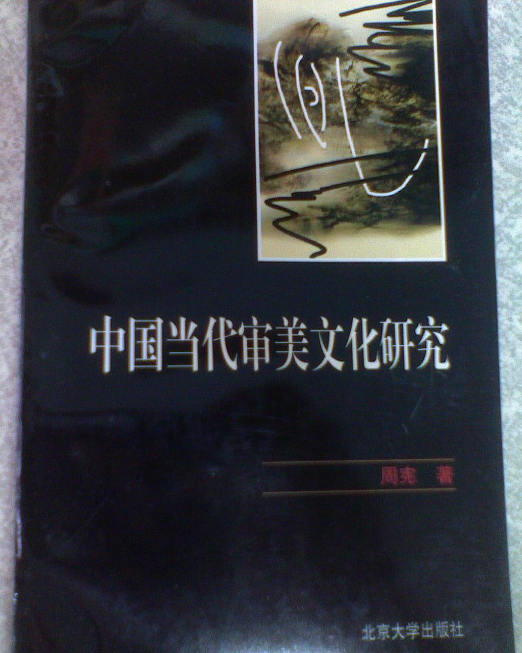 中国当代审美文化研究