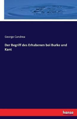 Der Begriff des Erhabenen bei Burke und Kant