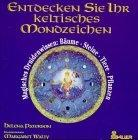 Entdecken Sie Ihr keltisches Mondzeichen. Magisches Druidenwissen