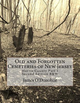 Old and Forgotten Cemeteries of New Jersey