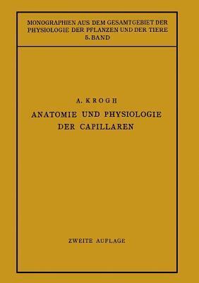 Anatomie Und Physiologie Der Capillaren