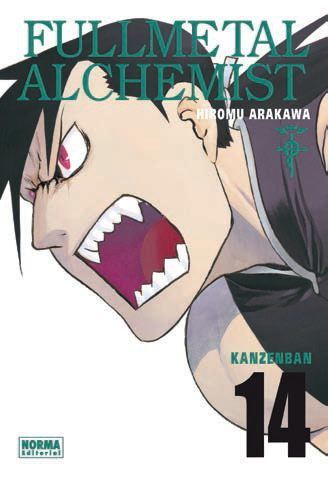 Fullmetal Alchemist Kanzenban #14 (de 18)