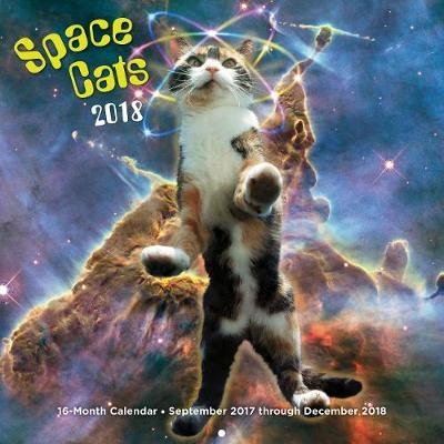 Space Cats 2018 Calendar