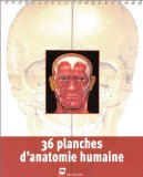 36 Planches d'anatomie humaine