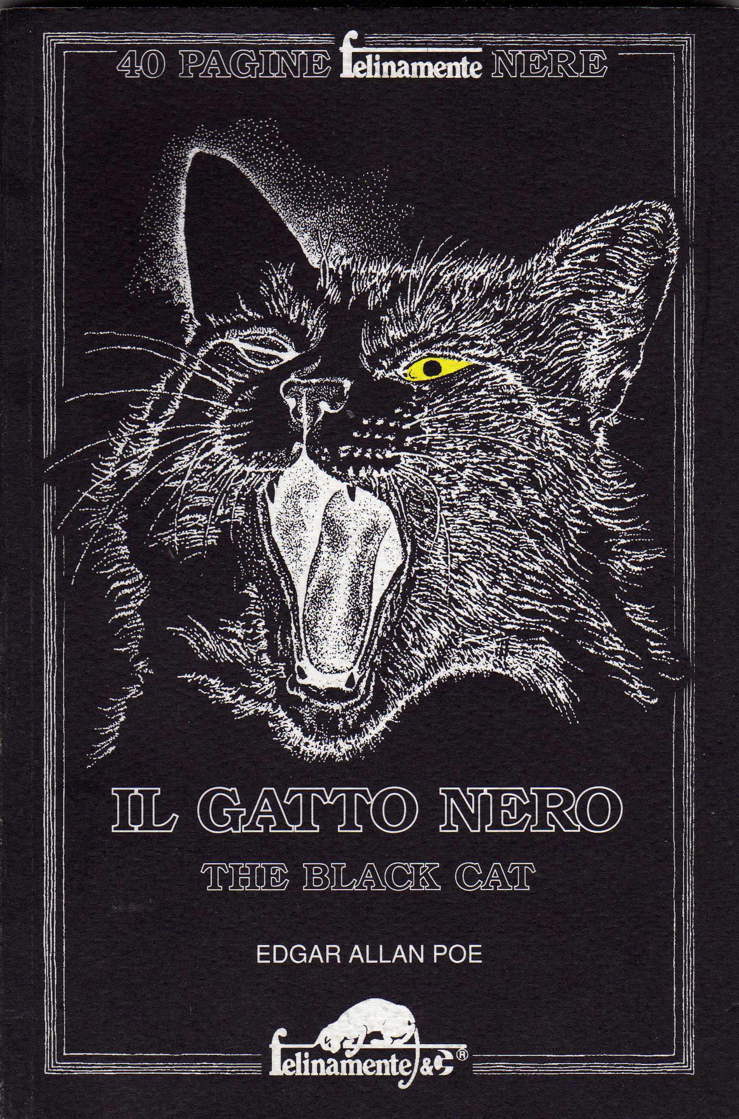 The Black Cat / Il g...