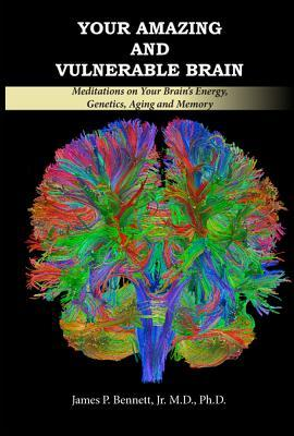 Your Amazing and Vulnerable Brain